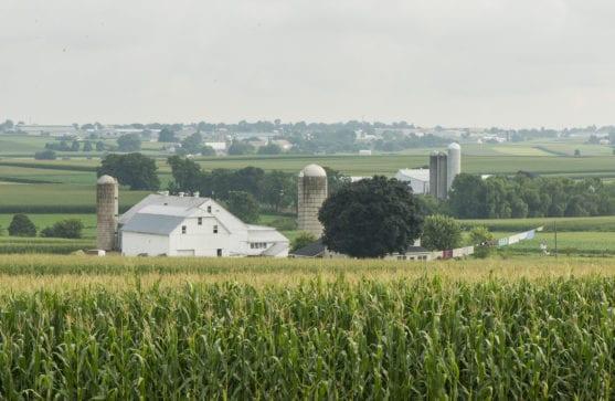Amish Farmland Tour