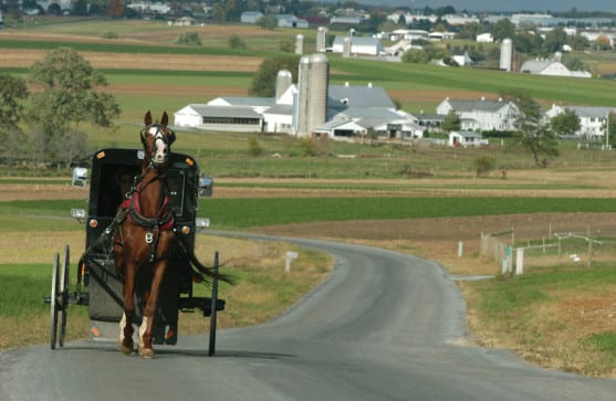 Amish History & Beliefs