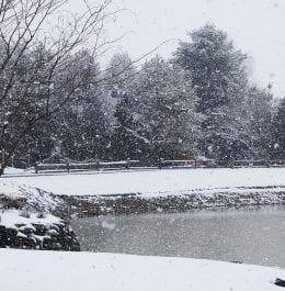 winterlodgingspecial_header