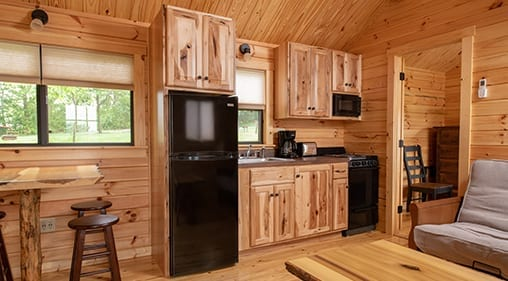 Cabin Kitchen Section