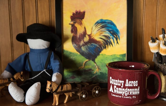 Country Acres Store Decor