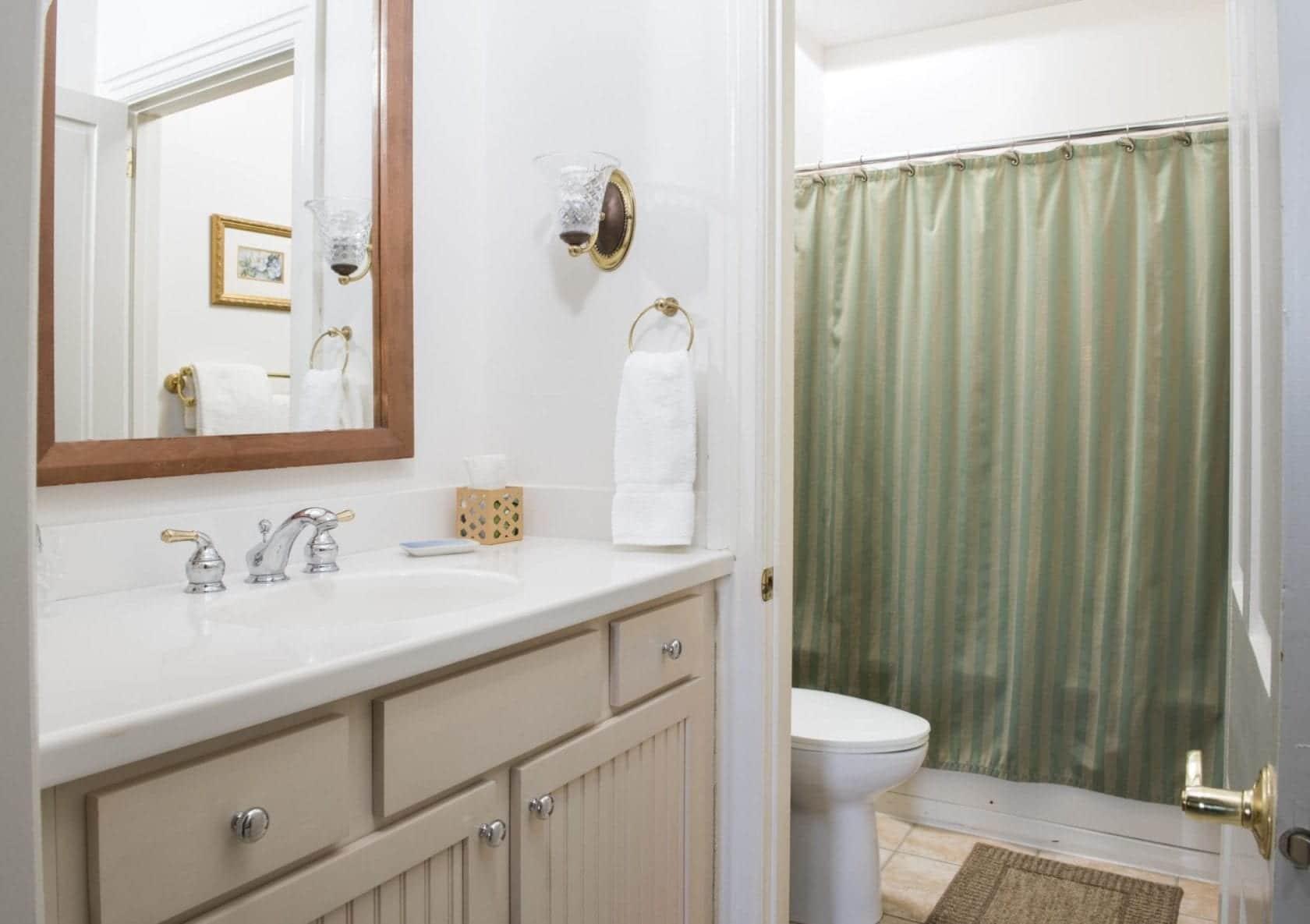 Gibbons Bathroom