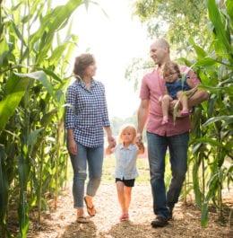 Family walking through a corn field in Lancaster, PA